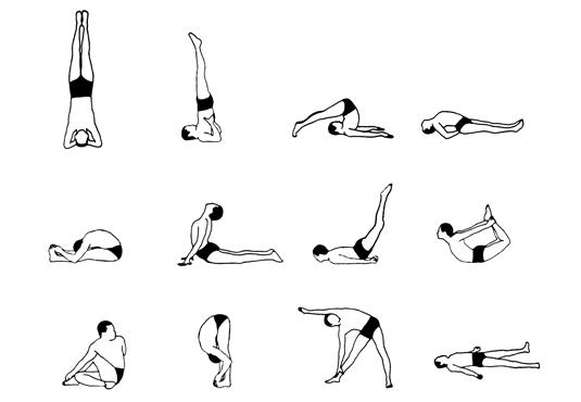 12 basic Asanas