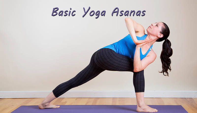 Basic Yoga Asanas