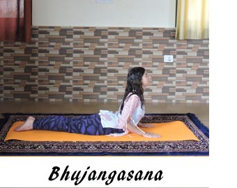 Prevention and Management of Back Pain Through Yoga