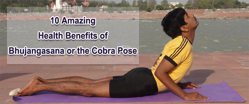 Enjoy The 10 Amazing Health Benefits Of Bhujangasana Or Cobra