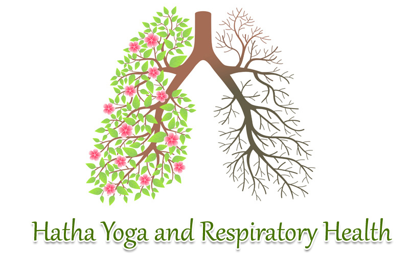The Principles And Practices Of Hatha Yoga Training Curriculum Are Very Useful For Health Respiratory System Proper Breathing Is An Important