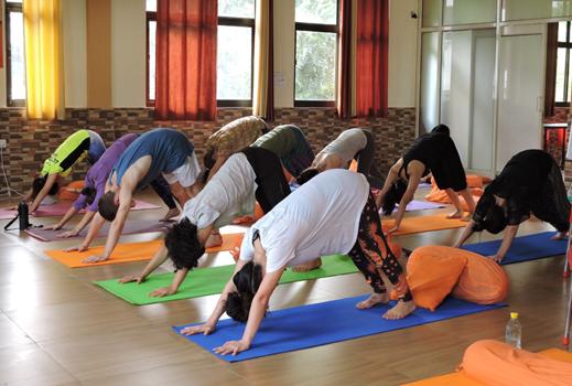 Rys 300 Hours Hatha Yoga Teacher Training In Rishikesh India